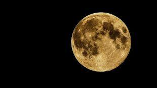 Za nami Pełnia Bobrzego Księżyca. Tej nocy Srebrny Glob będzie pięknie lśnił