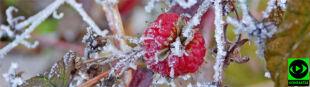 """""""Oddech zimy"""" na niesamowitych zdjęciach Reporterki 24"""