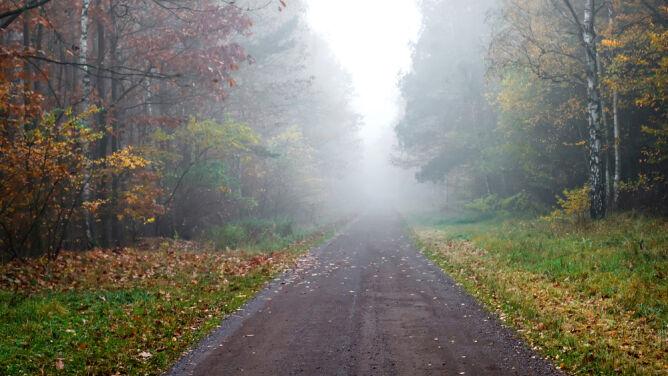 Uwaga na mgły i śliską nawierzchnię