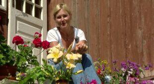 Kwiatowe gotowanie w ogrodzie na zboczu góry (odc. 473)